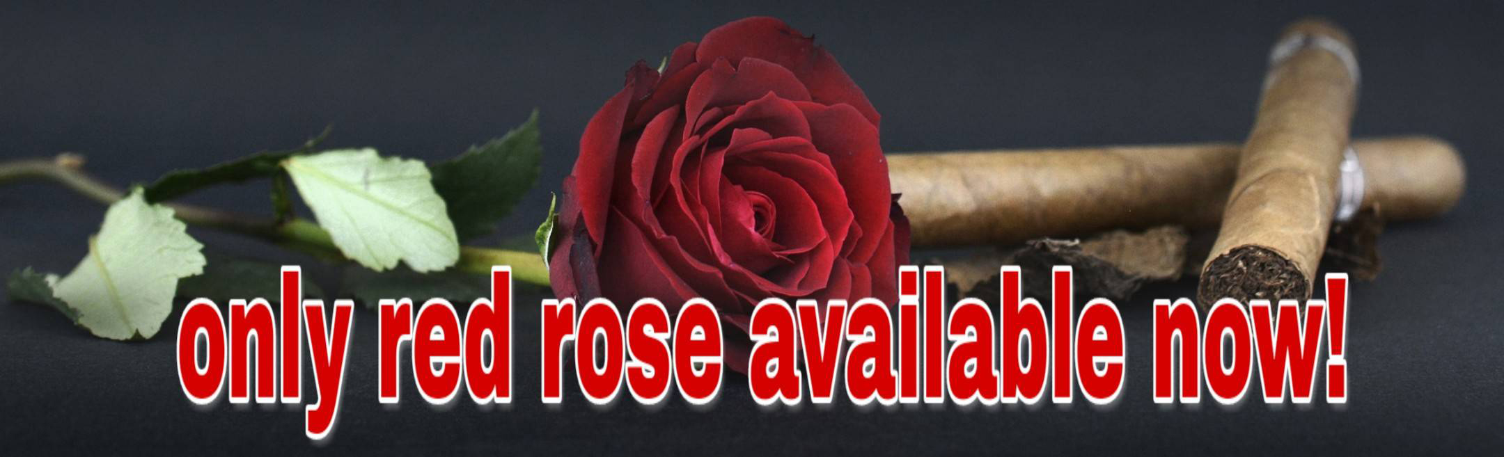 Valentine's Day Rose Thailand